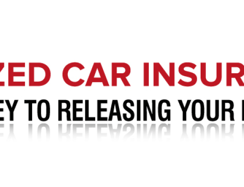 Seized Car Insurance Logo